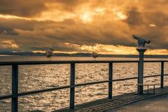 Seagulls na metalu poręczu przy zmierzchem Fotografia Royalty Free