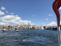 Seagulls nad Bosphorus cieśniną obrazy stock