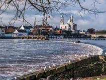 Seagulls nad rzeką, Athlone tama w tle Obraz Stock