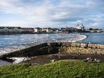 Seagulls nad rzeką, Athlone tama w tle Fotografia Royalty Free