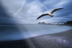 Seagulls over beach with light beam Royalty Free Stock Images