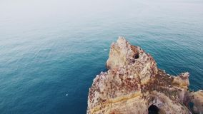 Seagulls over rocks in the ocean aerial view stock video footage