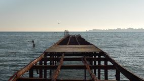 Seagulls on the pier stock footage