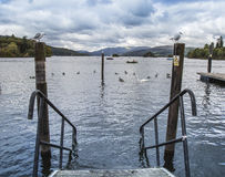 Seagulls on posts at steps at Windermere in the Lake District Royalty Free Stock Photo