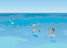 Seagulls on the sea. The vector image of seagulls flying over the sea Royalty Free Stock Image