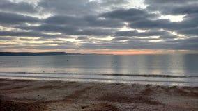 Seagulls on the sea at sunrise Stock Image