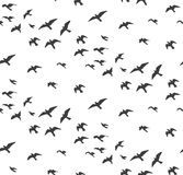 Seagulls silhouettes seamless pattern. Flock of flying birds gra Stock Photos