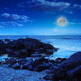 Seagulls sit on big  boulders near the sea watching moon Stock Image