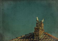 Seagulls sitting on the chimney. Grunge and retro style Royalty Free Stock Image