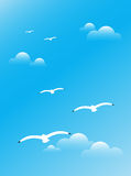 Seagulls  in the sky Royalty Free Stock Images