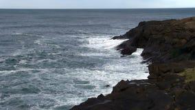 Seagulls som flyger över vågor på Lava Rock Depoe Bay Oregon lager videofilmer