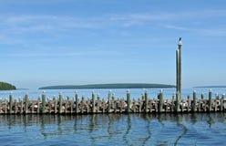 Seagulls som placerar på hamnpol i bayfield, WI Royaltyfri Foto