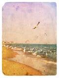 seagulls stary pocztówkowy seascape ilustracja wektor