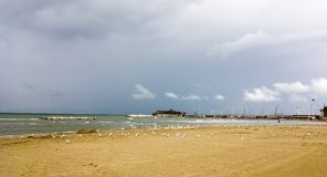 The seagulls. Storm on the Adriatic. The seagulls. Storm on the Adriatic .Rimini Italy.The end season Stock Photo