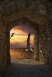 Seagulls at sunset in Santorini island Royalty Free Stock Photography