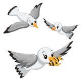 Seagulls wektoru ilustracje Obrazy Stock