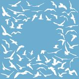 Seagulls white silhouette on blue background. Card design. Vector Stock Photos