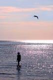 seagullsolnedgångkvinna Fotografering för Bildbyråer