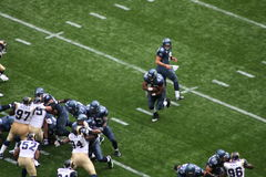 seahawk offense Royalty Free Stock Photos
