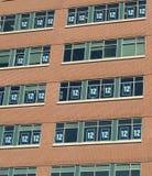 Seahawks 12 Mannfenster Stockbild