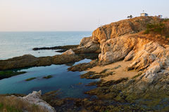 The seahore landscape Stock Image