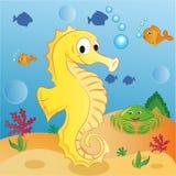 seahorse Stock Foto