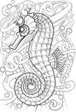 seahorse Royaltyfri Foto