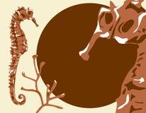 Seahorse Background Royalty Free Stock Image
