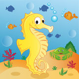 Seahorse. Cancer and deep-sea fish Stock Photo
