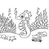 Seahorse coloring pages vector Royalty Free Stock Images