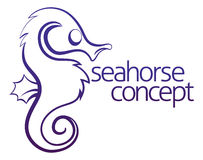 Seahorse concept Royalty Free Stock Images