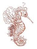 Seahorse de la fantasía Imagen de archivo libre de regalías