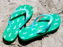 Seahorse Flip Flops. Green and Blue Flip Flops on the beach royalty free stock image