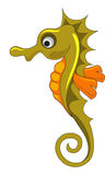 Seahorse, illustration. Seahorse, Gold and Orange, vector illustration Royalty Free Stock Photos