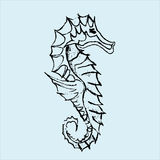 Seahorse illustration Royalty Free Stock Photo