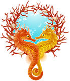 Seahorse love frame Royalty Free Stock Photos