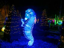 Seahorse luminous display in park at Christmas by night