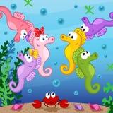 Seahorse onder overzees Royalty-vrije Stock Foto