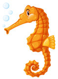 Seahorse in orange color Stock Photography
