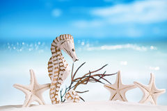 Seahorse with red corals on white sand beach Stock Photography
