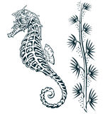 Seahorse. Between seagrass, vintage illustration Royalty Free Stock Image