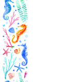 Seahorse, shell, starfish, coral and bubbles seamless border. Stock Photos