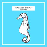 Seahorse sketch Royalty Free Stock Image