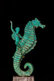 Seahorse Statue. Puerto Vallarta, Mexico - December 8, 2013: The seahorse statue, otherwise known as Caballeo del Mar, is one of Puerto Vallartas most famous Stock Photos