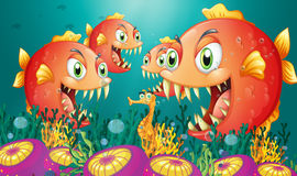 A seahorse surrounded by a group of hungry piranhas Royalty Free Stock Image