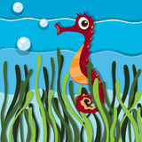 Seahorse swimming under the ocean Royalty Free Stock Images