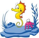 Seahorse und Krake Stockbild