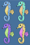 Seahorse vector illustration set Royalty Free Stock Photo