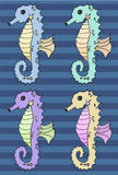 Seahorse vector illustration set Stock Photography