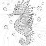 seahorse Vuxen antistress färgläggningsida Royaltyfri Foto